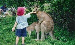 Read more about the article การพาลูกไปเที่ยวสวนสัตว์ มีประโยชน์อย่างไรบ้าง