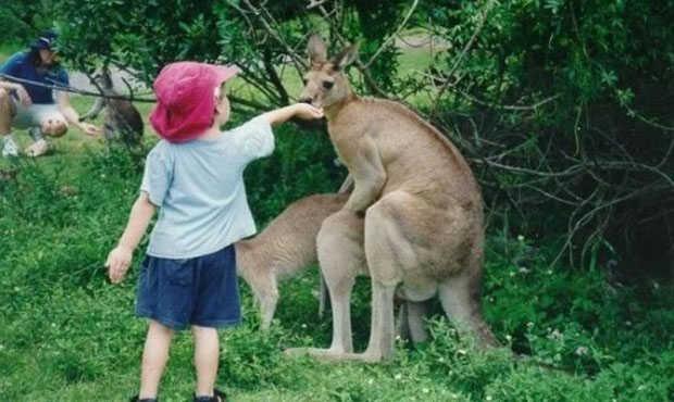 You are currently viewing การพาลูกไปเที่ยวสวนสัตว์ มีประโยชน์อย่างไรบ้าง